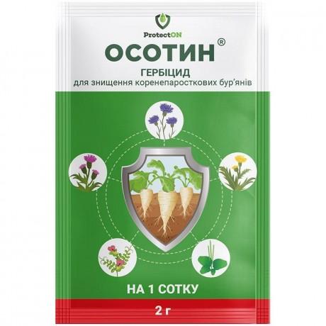 osotin-medium
